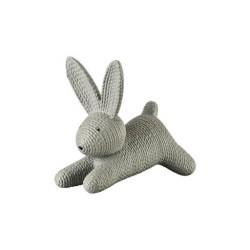 Rabbits - Zając średni szary