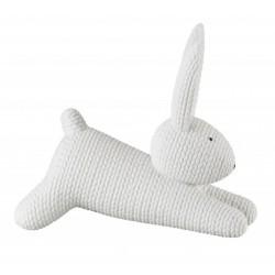 Rabbits - Zając duży biały