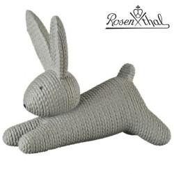Rabbits - Zając duży szary