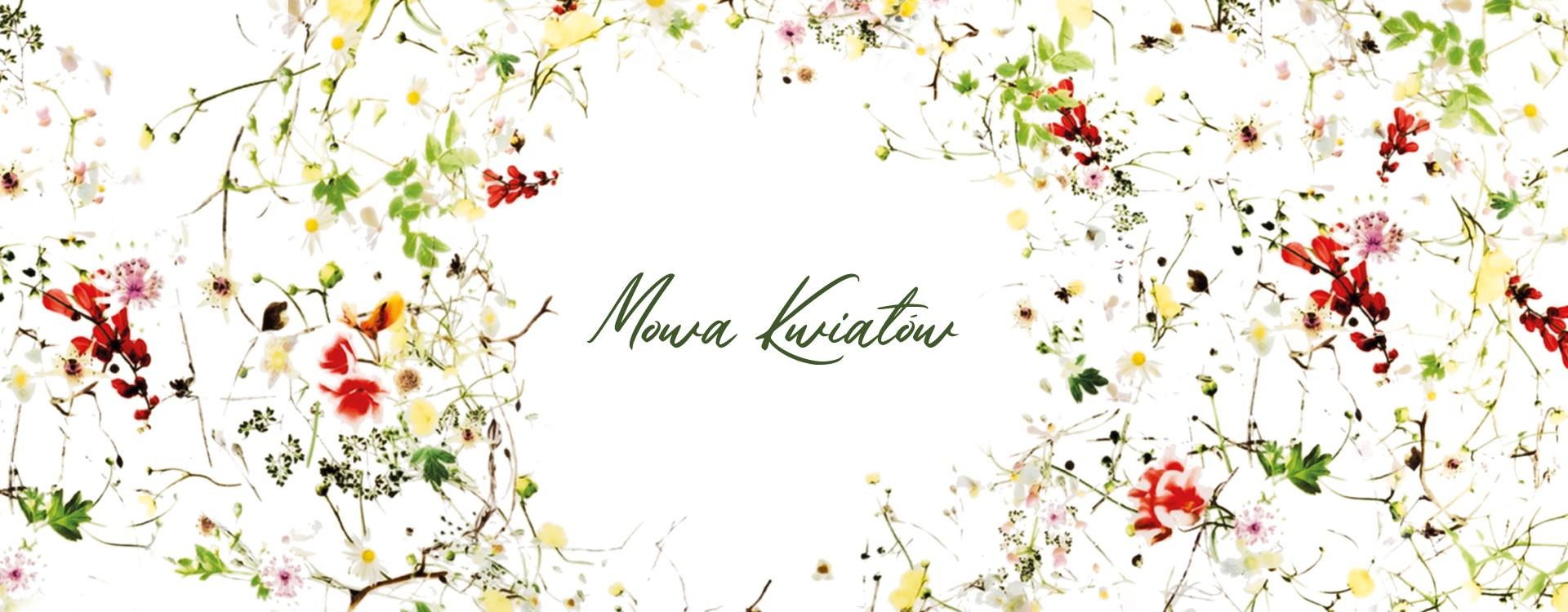 MOWA KWIATÓW - wyjątkowa oferta dla miłośników kwiatowych motywów